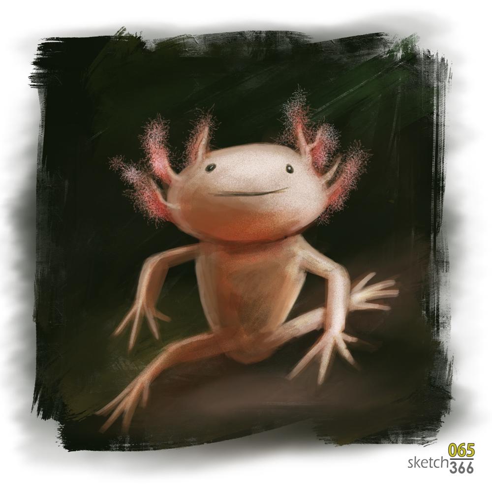 axolotl - digital paint