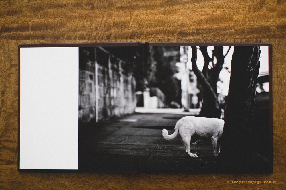 twoguineapigs_fine-art-album_1500-2.jpg