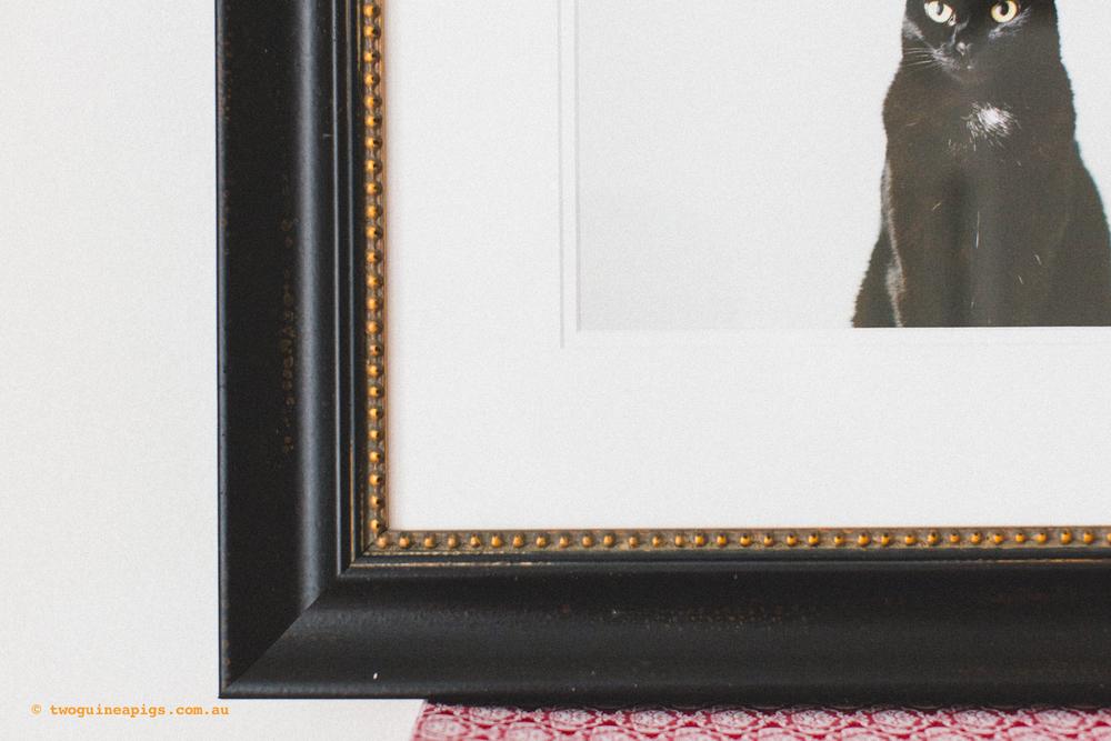 twoguineapigs_signature-frames_1500-4.jpg