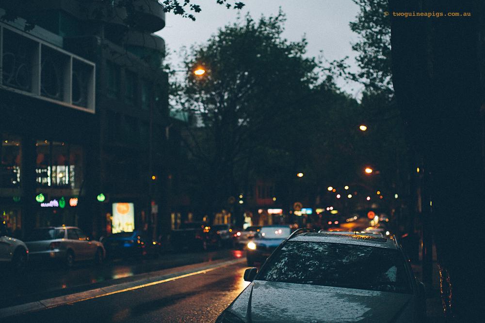 twoguineapigs_rain_spring_1500-23.jpg