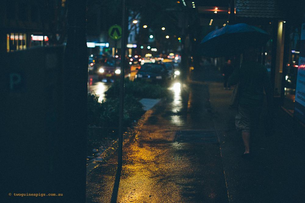 twoguineapigs_rain_spring_1500-24.jpg