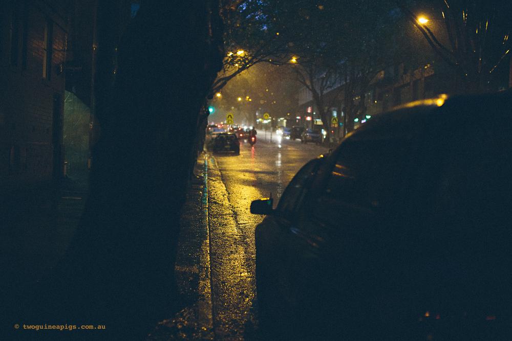 twoguineapigs_rain_spring_1500-28.jpg
