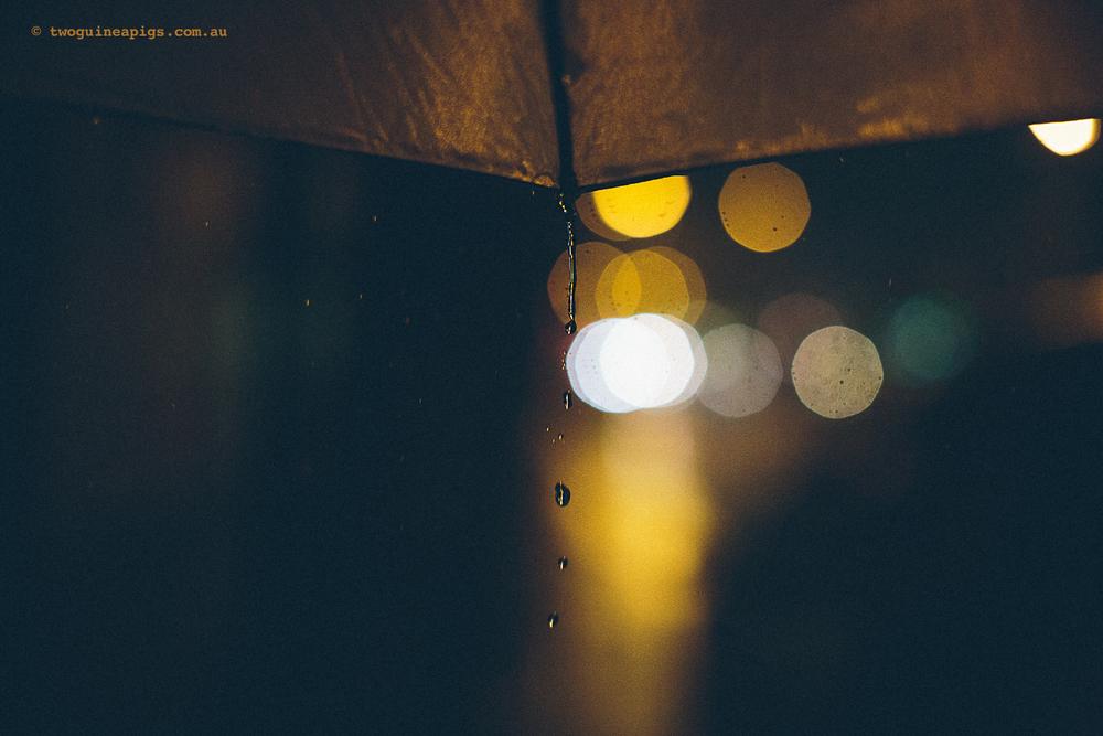 twoguineapigs_rain_spring_1500-29.jpg