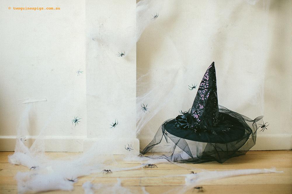 twoguinepaigs_halloween_witchshat_1500-6.jpg
