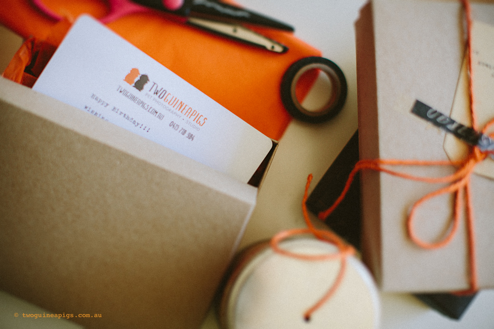 twoguineapigs_giftcards_packaging_2013-1500.jpg