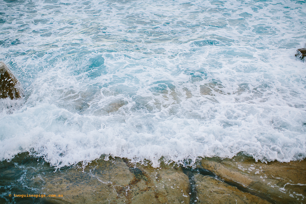 twoguineapigs_pet_photography_ocean_sea_landscapes_autumn_twilight