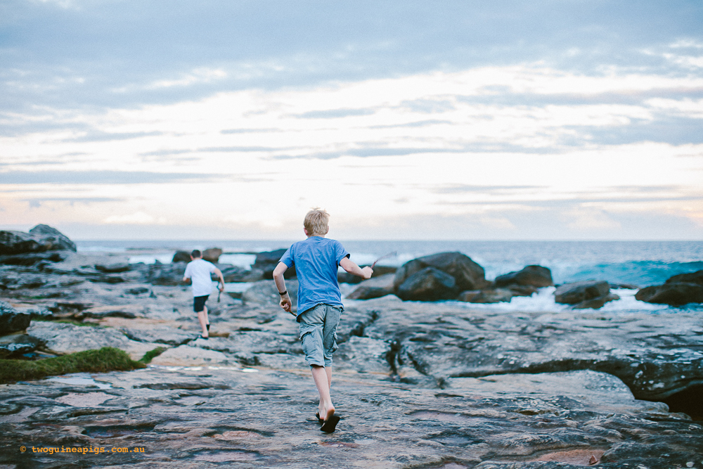 twoguineapigs_pet_photography_kids_play_sydney_coastal_autumn_twilight