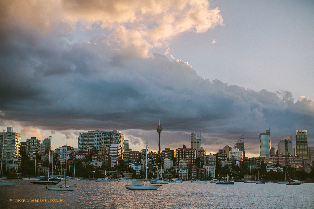 twoguineapigs_rushcutters_bay_winter_sunset_landscapes_1500-7.jpg