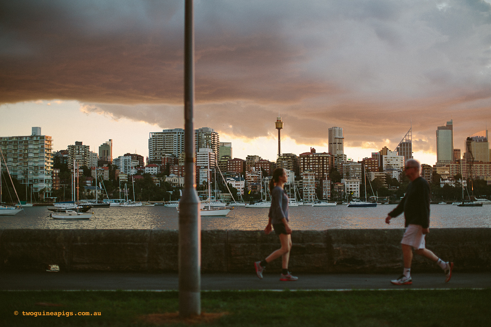 twoguineapigs_rushcutters_bay_winter_sunset_landscapes_1500-14.jpg