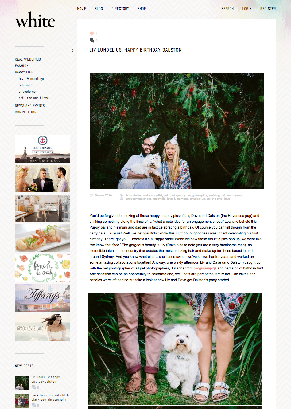 twoguineapigs_pet_photography_dalston_havanese_birthday_shoot_puppy_liv_lundelius_white_magazine_feature
