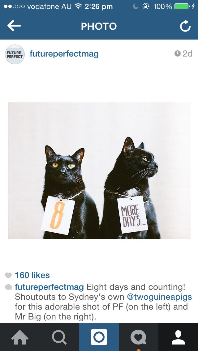 future_perfect_magazine_instagram