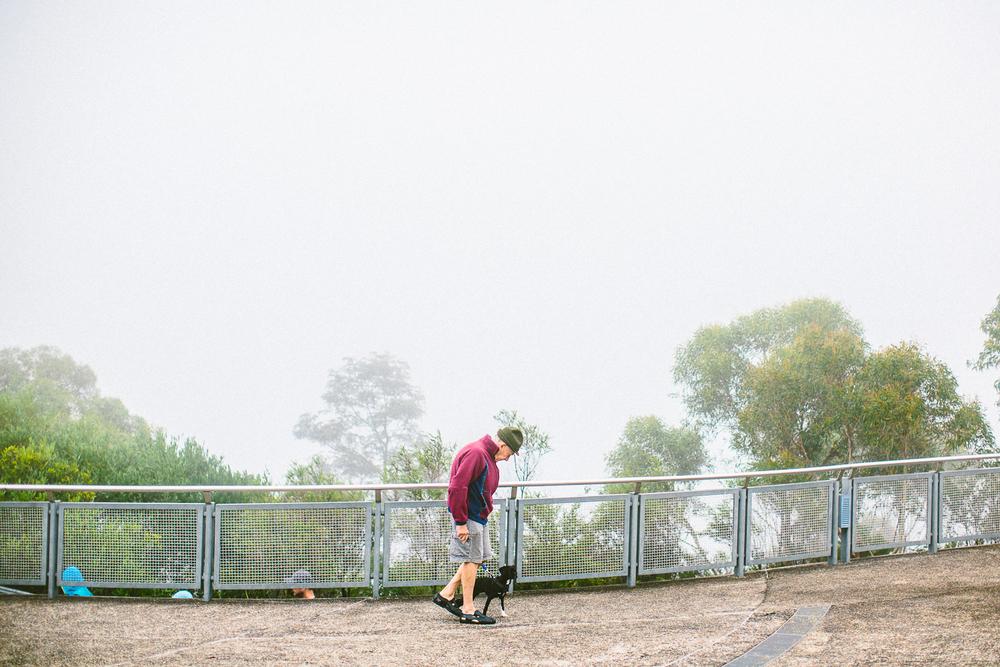 twoguineapigs_pet_photography_blue_mountain_roadtrip_fog_1500-04.jpg