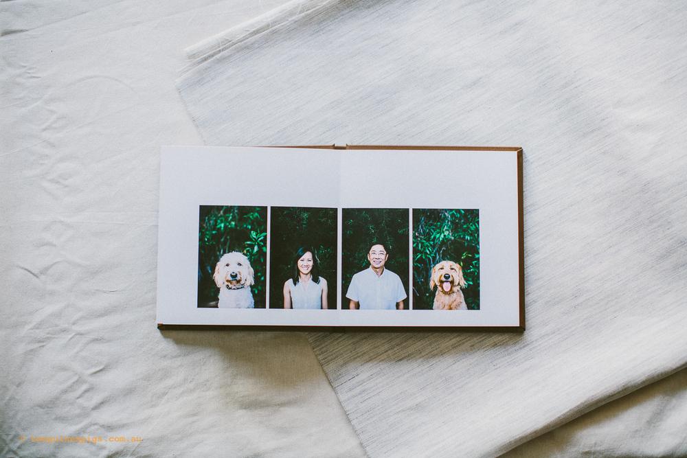 twoguineapigs_pet_photography_fine_art_album_groodles_coco_milo_waverton_animal_dogs