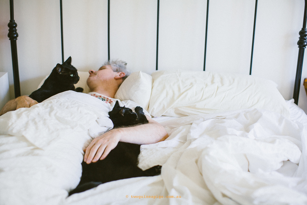 twoguineapigs_pet_photography_sleep_in_bedroom_series_not_a_morning_person_christmas_madness_behind-the-scenes