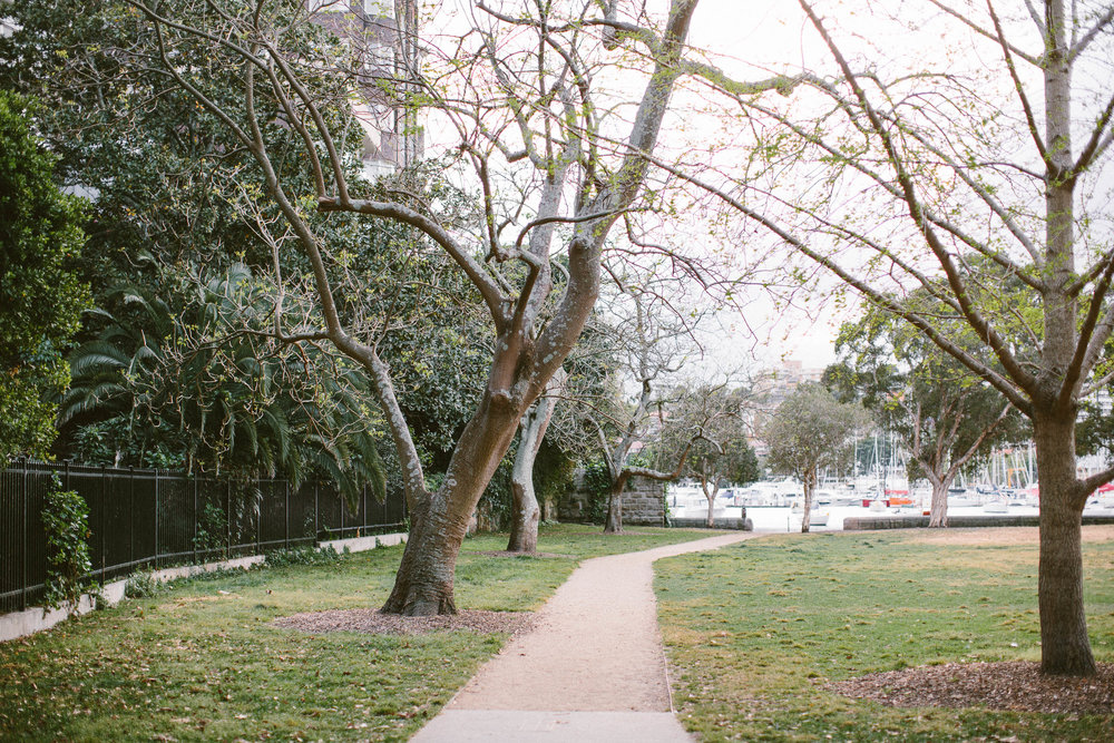 © jkblackwell_twoguineapigs_rushcutters bay_location scout_3000_2.jpg
