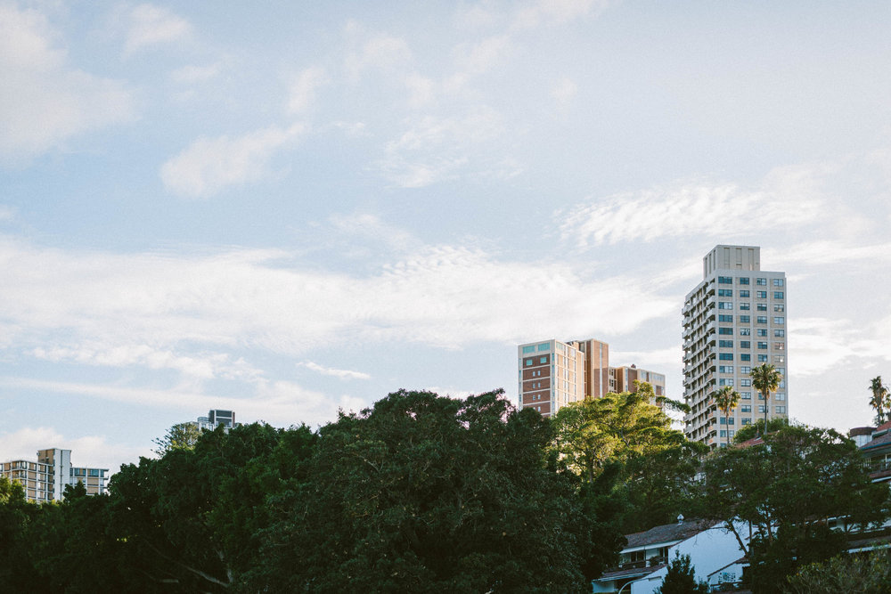 © jkblackwell_twoguineapigs_rushcutters bay_location scout_3000_14.jpg