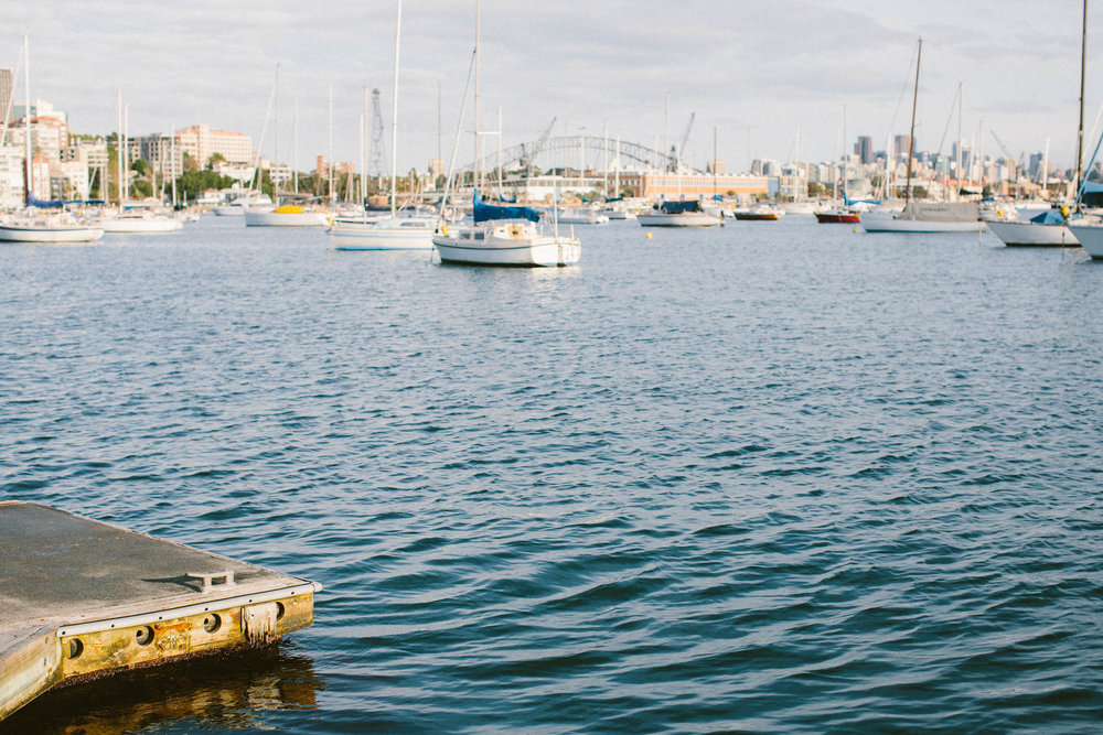 © jkblackwell_twoguineapigs_rushcutters bay_location scout_3000_21.jpg