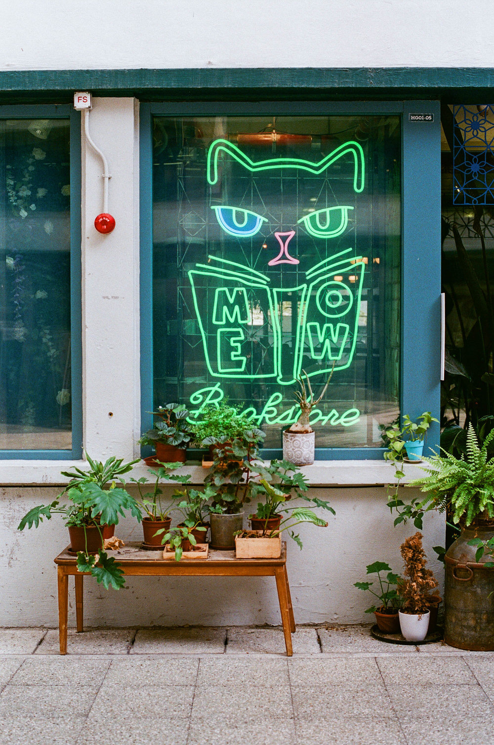 Meow Cafe Hong Kong Central © 2019 JK Blackwell twoguineapigs
