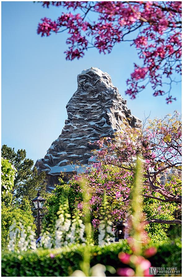 Matterhorn - March 17, 2016