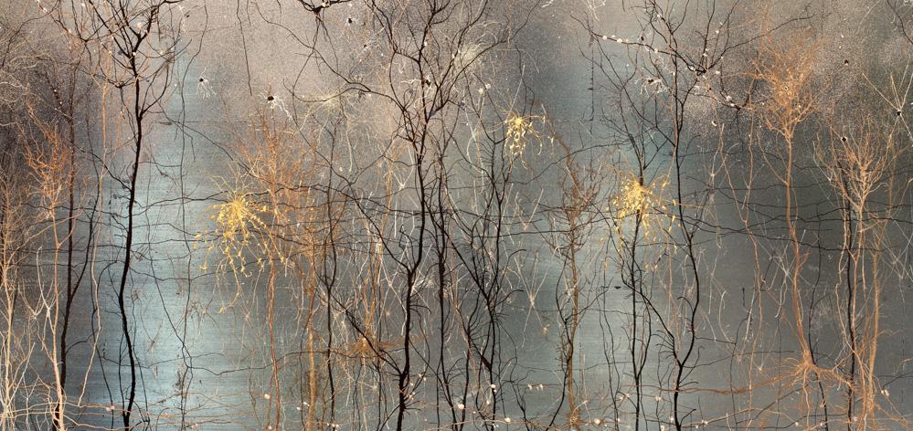 A foto acima, é um trabalho de dois neurocientistas,©Greg Dunn & Will Drinker, Sendo também artistas plásticos eles aproveitaram imagens produzidas por tecnologia de ponta para enriquecerem com pó de ouro. O que vemos, é um ínfimo instante de neurônios em movimento.