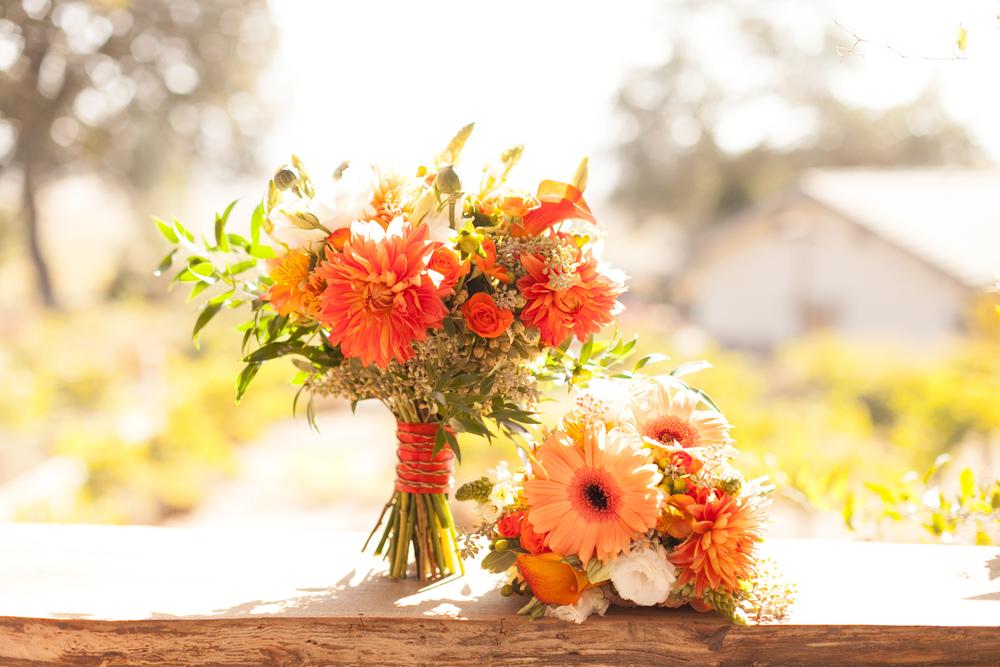 StillWaterVineyards_Wedding-0134.jpg