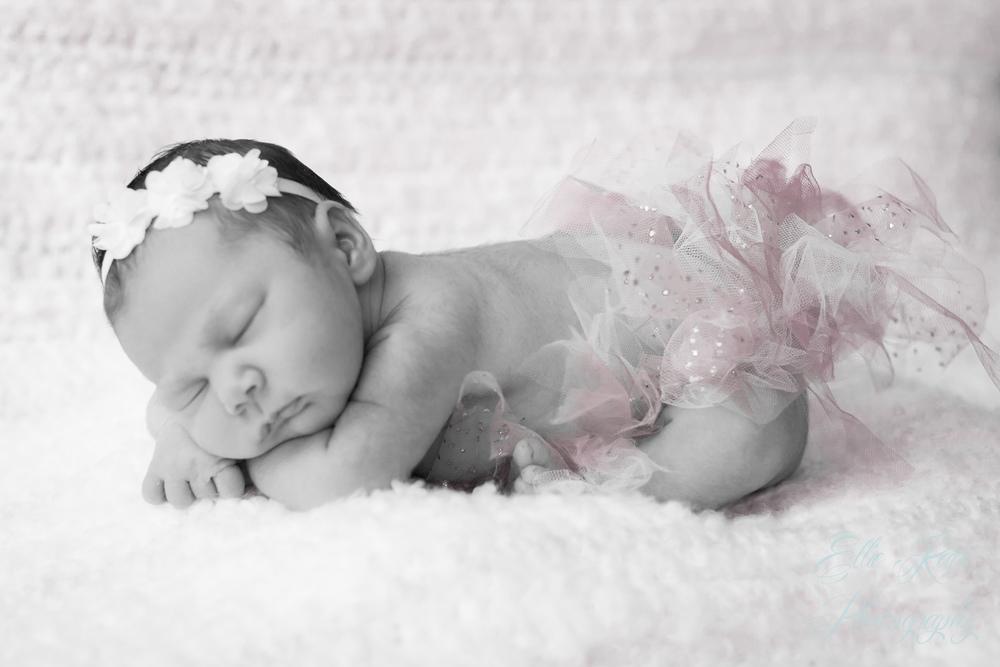 Paso Robles Newborn Portraits-0142-2.jpg