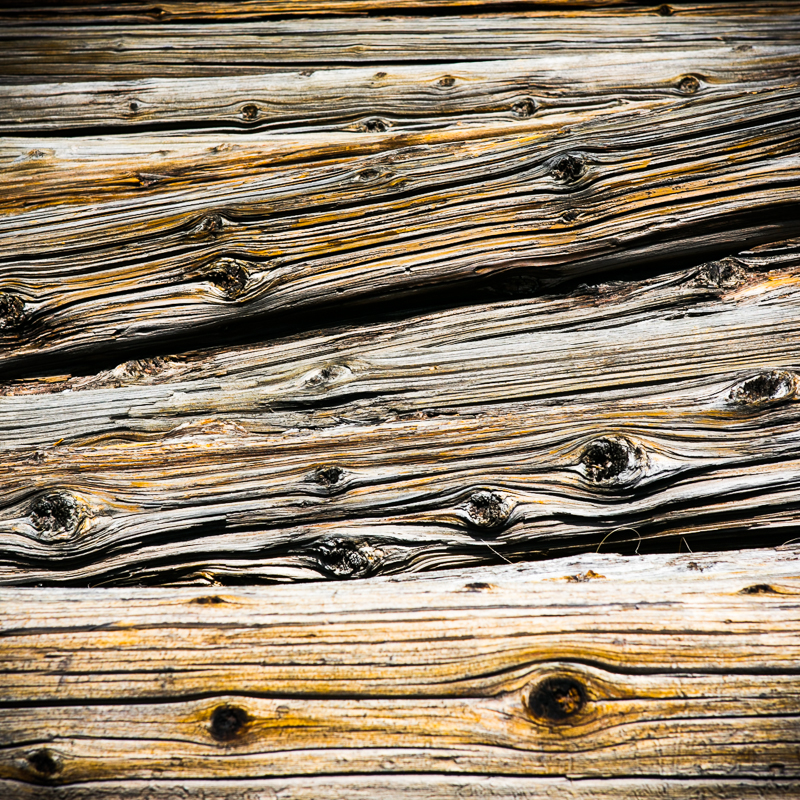 Logs - Death Valley