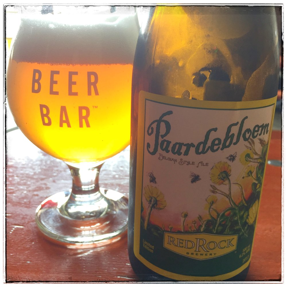 Paardebloem in the sunlight at The Beer Bar