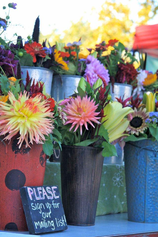 flowers bexley farmers market.jpg