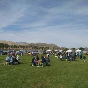 Best Dam Food Festival  Saturday, March 4, 11AM-5PM Davis Camp Park, Bullhead City, Arizona Admission: $7 per vehicle Web:  MC Parks
