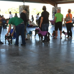 BHC ACW Howling on Halloween  Saturday, October 31, 8AM-12PM Rotary Park - Bullhead City, Arizona Admission: FREE Web:  Bullhead City Animal Care & Welfare