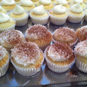 MIni-Cupcakes.png