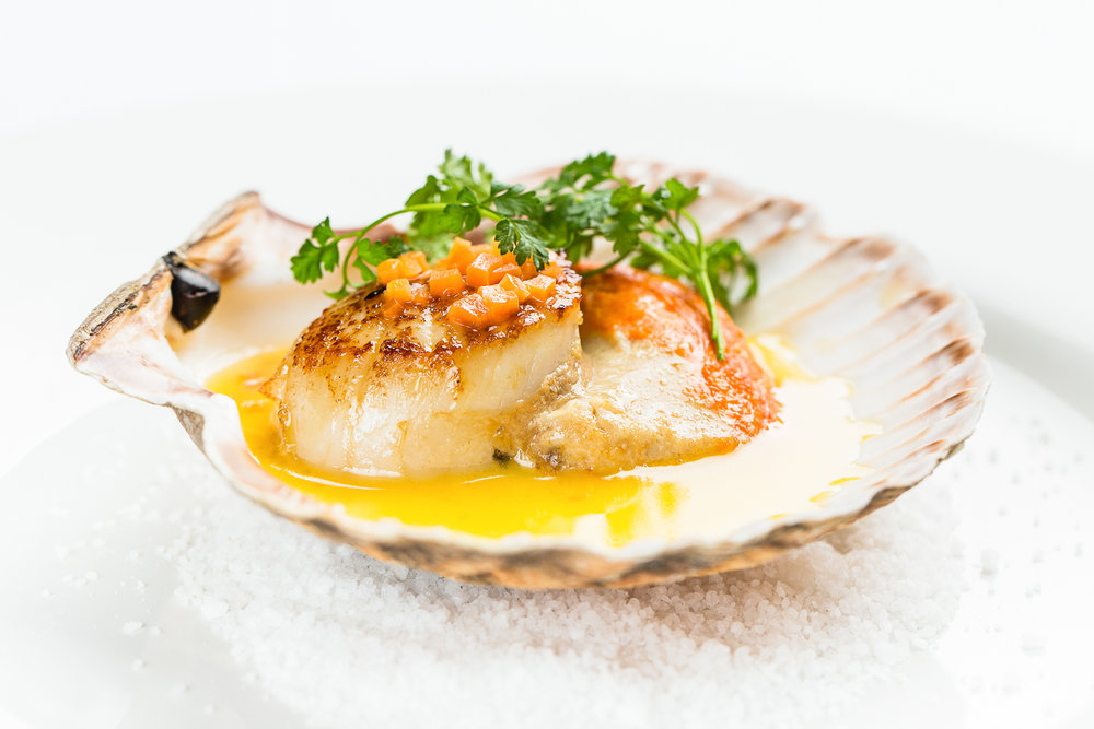Neil Forbes Cafe St Honoré Hand-dived Scallop with Carrot Butter Sauce WEB SIZE (Credit - Paul Johnston)-CMPL0639-Edit-2.jpg