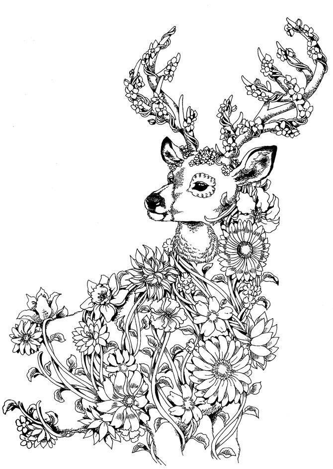 flowerSTAG.jpg