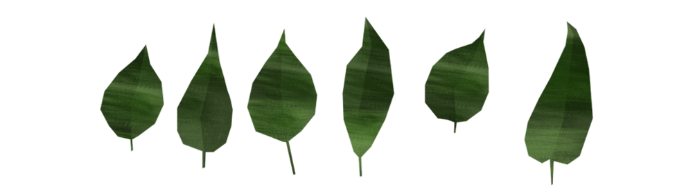 alecta-leaves.png