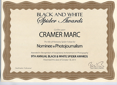 2014 Black & White Spider Awards