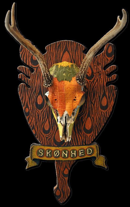 skonhead.png