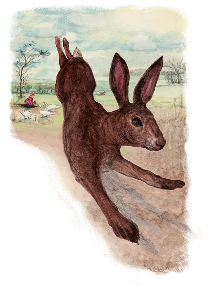 jackie-taylor-hare-leaving.jpg