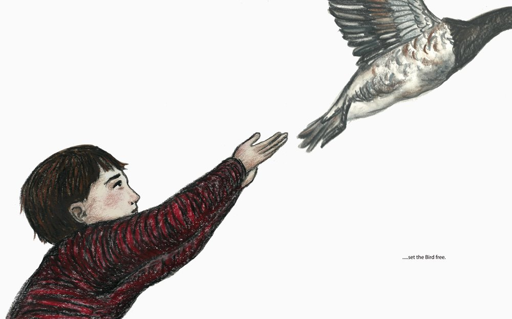 Double page spread from The Bird, picture book