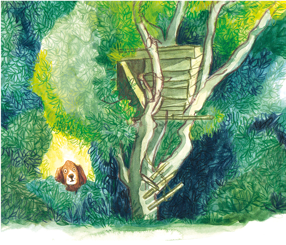 6. dog tree houseLOWRGB.jpg