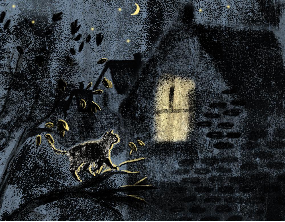 dark night cat.jpg