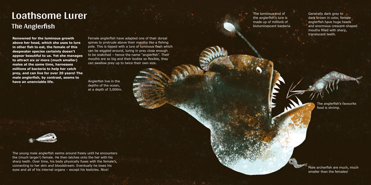 """The Ugly Club""–Loathsome Lurer–The Anglerfish."