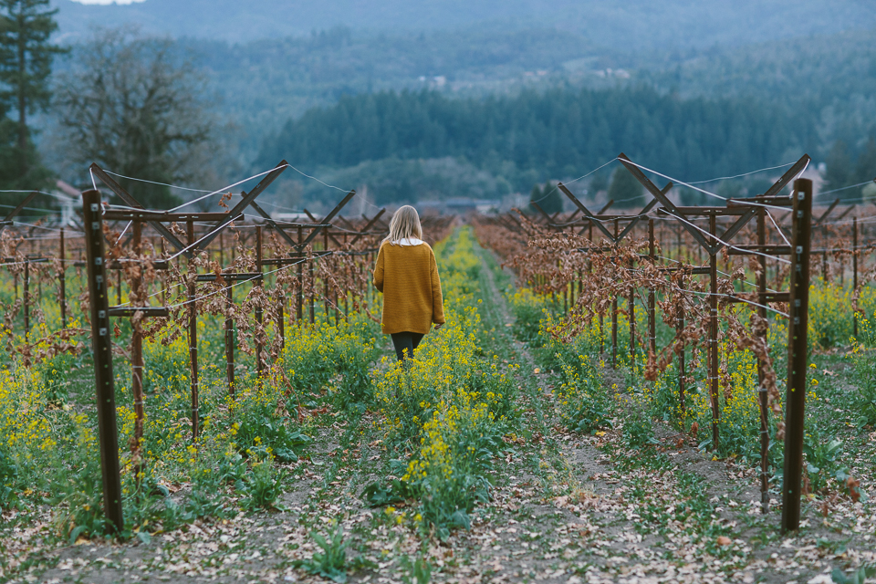 Vineyard Hopping, St Helena, CA | Someplace Wild | www.someplacewild.com
