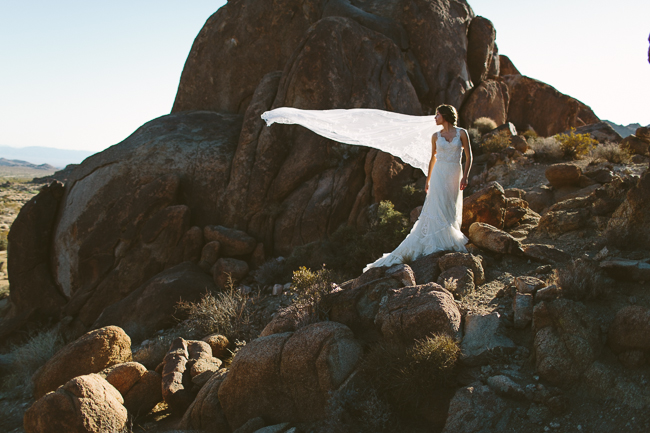 Joshua Tree Bridal Portrait