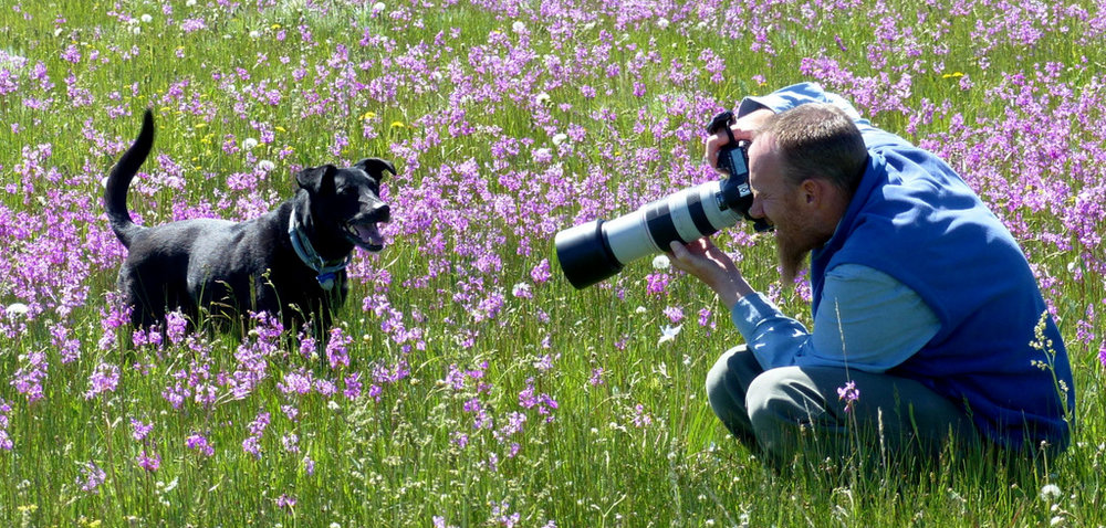 Pet Photography, Bozeman, Montana