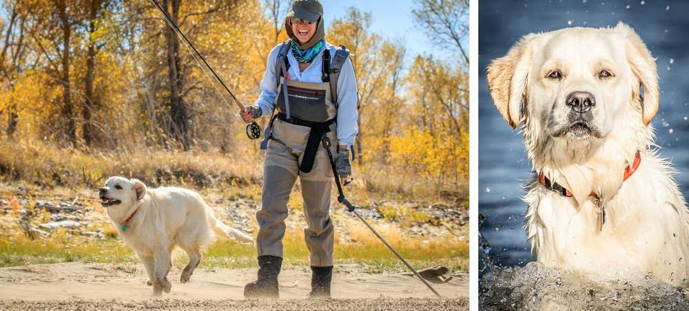 Dog Photography, Outdoors, Bozeman