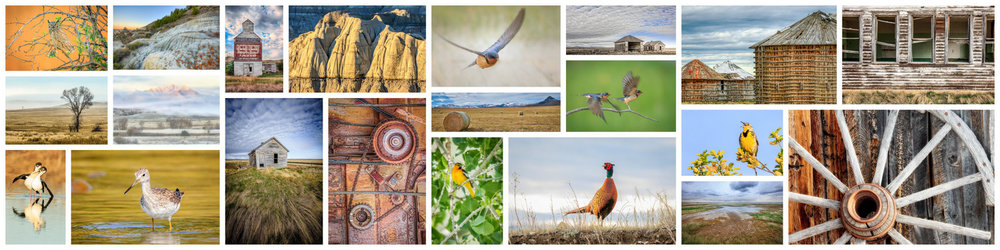 Photography Workshops, Outdoors, Montana