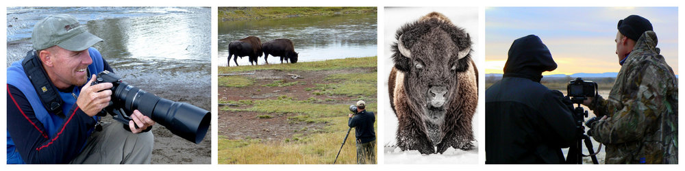 Montana Nature Photography Workshops, Rowan Nyman