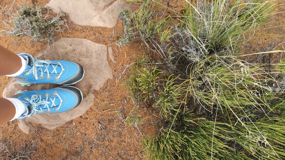 My cute Ahnu hiking boots did the job in the Grand Canyon.