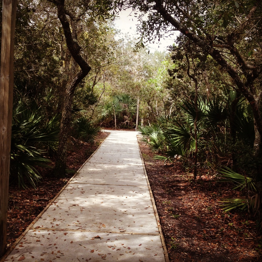 ACA Path.jpg